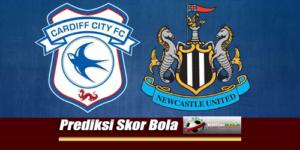 Prediksi Skor Cardiff City Vs Newcastle United 18 Agustus 2018